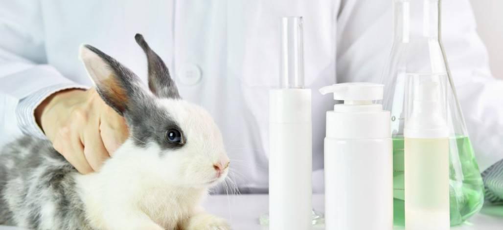 artigo-testes-em-animais-como-funcionam-e-o-que-e-o-mercado-cruelty-free-1110x508